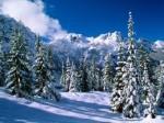 noel neige.jpg